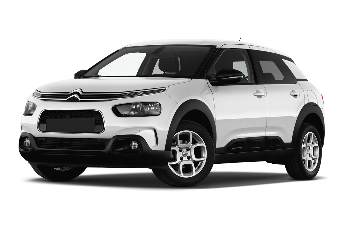 Leasing CITROEN C4 CACTUS BUSINESS en loa ou lld